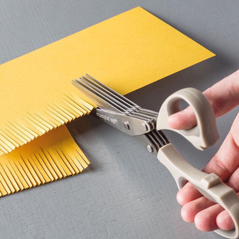 Fringe Scissors, Stampin Up, 133325G