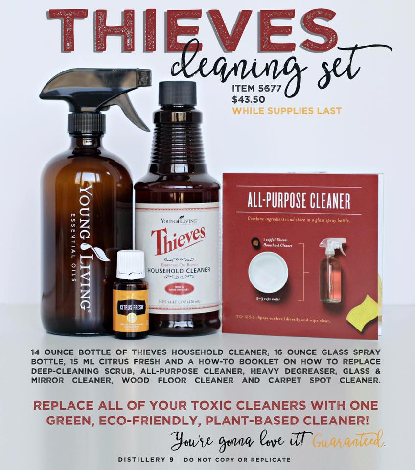 2016-05 Limited Time Thieves Cleaning Set